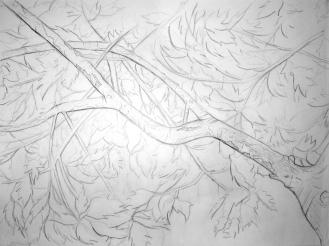 Contour Tree Drawing (Anna)